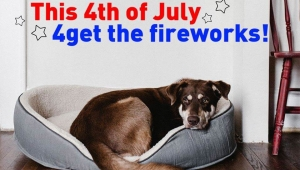 For Their Sakes, '4get' the Fireworks!
