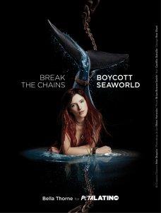 Bella Thorne: Boycott SeaWorld