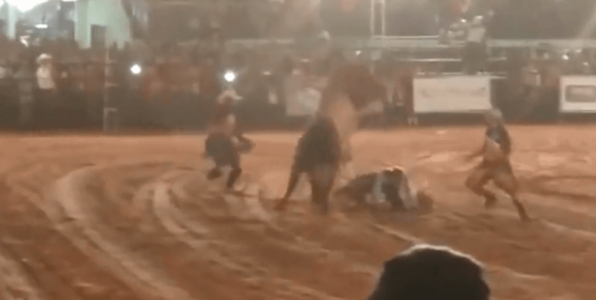 Video: Bull Used for Human 'Entertainment' Stomps Rodeo Rider to Death