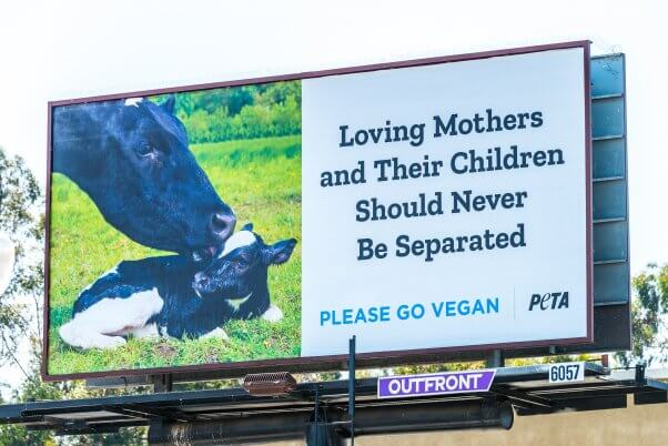 """""""Loving Mothers and Their Children Should Never Be Separated"""" billboard"""