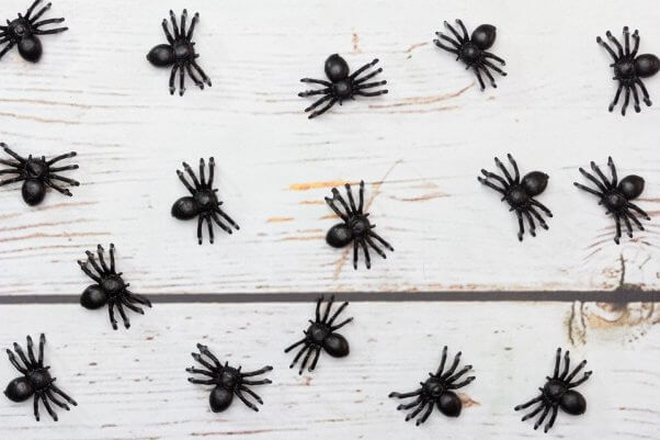 black toy spiders on white table
