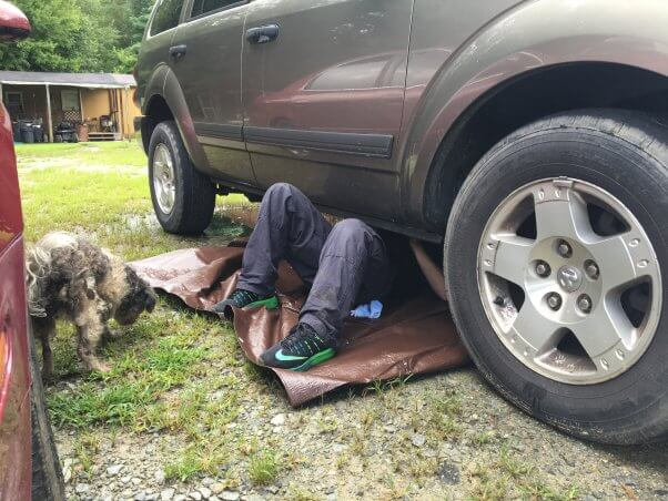 PETA fieldworker under car retrieving kitten