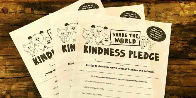 Order a Class Set of Kindness Pledges