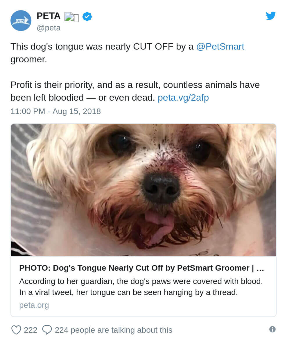 7 Reasons Not to Shop at PetSmart Sellout Chewy com | PETA