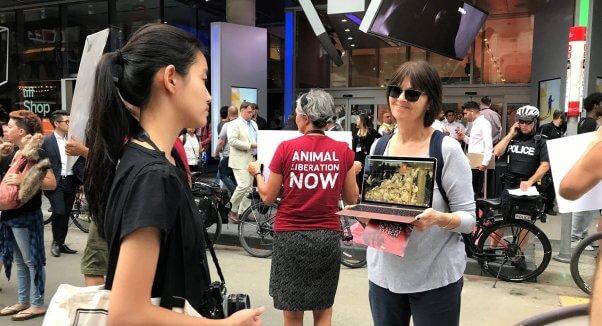 Woman holding laptop playing PETA Canada Goose footage