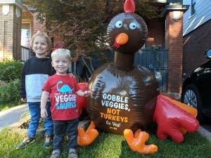 Carve Pumpkins, Not Turkeys: 6 Ideas for Animal-Friendly Fall Fun
