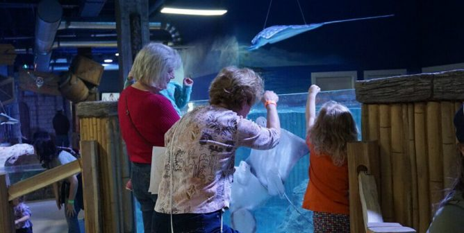 Infamous SeaQuest Owner Wants to Open More Aquariums | Take Action