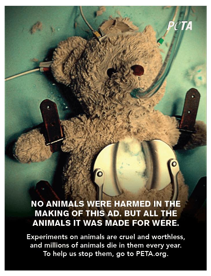teddy bear animal experimentation ad, y&r, vmly&r