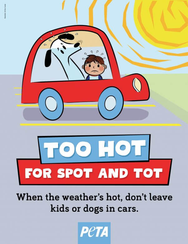 Too Hot for Spot and Tot Hot Car Ad