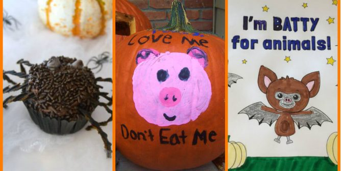 13 Kind Classroom Ideas for Halloween That Compassionate Teachers Will Love