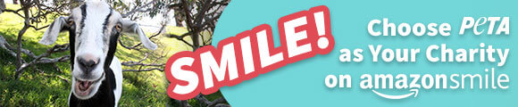 select peta as your charity on amazon smile