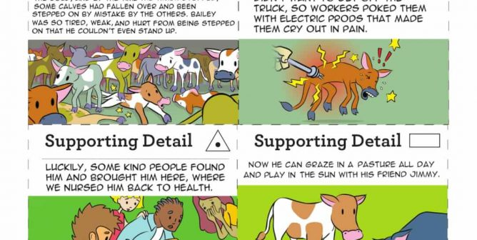 'Main Idea' Sorting Game: Find Supporting Details in Animal Comics