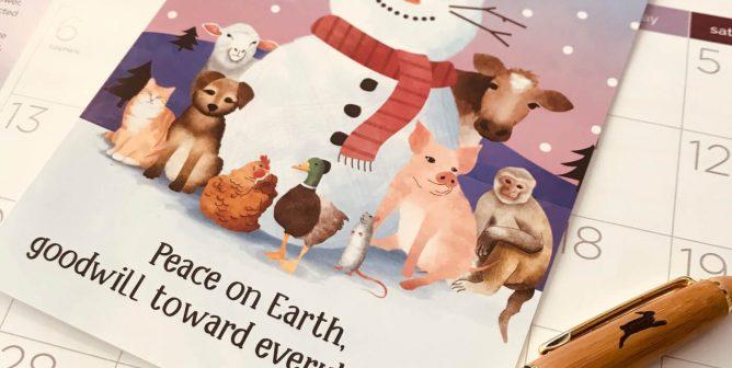 2019 Rescued Calendar and 'Hoppy Holidays' Card Set