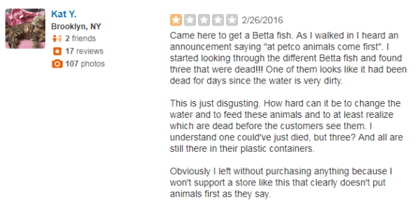 Bad Petco Yelp Review about Betta Fish