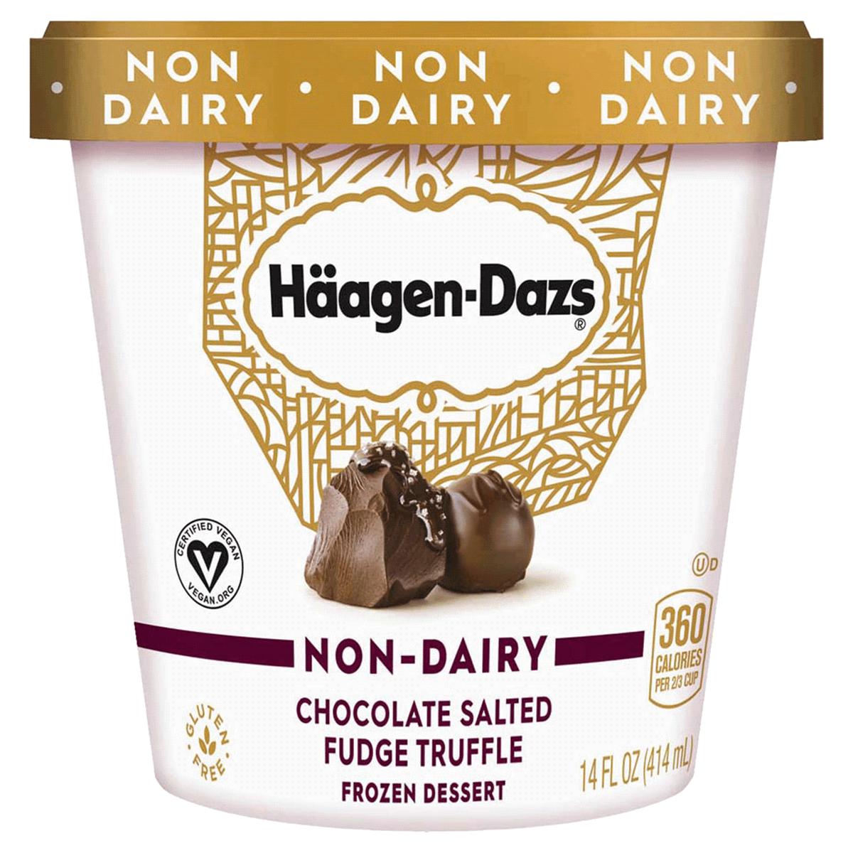 haagen-dazs nondairy chocolate salted fudge truffle
