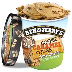 vegan ice cream at meijer