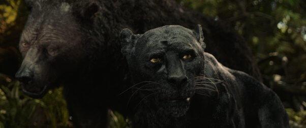 peta review netflix mowgli 2018