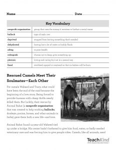Camel Rescue Reading Comprehension Sheet
