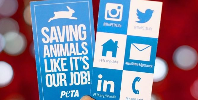 Help a Friend and Make Money: PETA Pays for Successful Candidate Referrals!