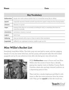 Miss Willie Rescue Reading Comprehension Sheet