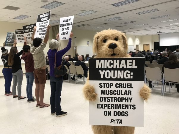 PETA supporters hold signs protesting TAMU dog lab at Board of Regents meeting