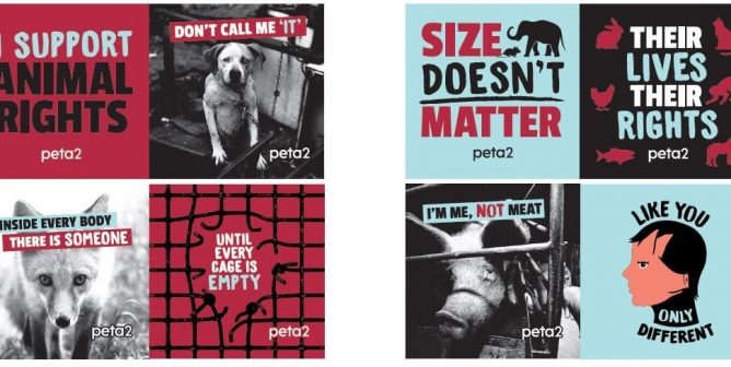FREE 'Like You, Only Different' Stickers | PETA