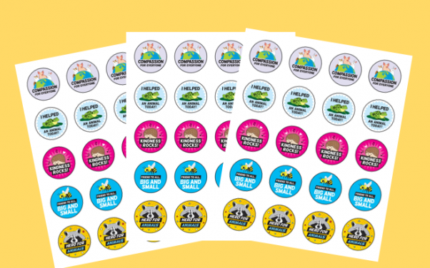 TeachKind Reward Stickers
