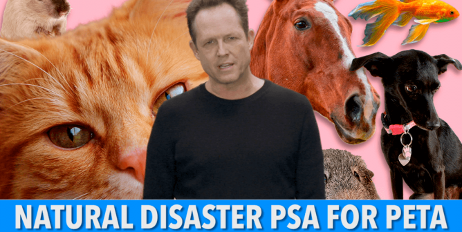 Dean Winters: Never, EVER Leave Your Animal Companions Behind