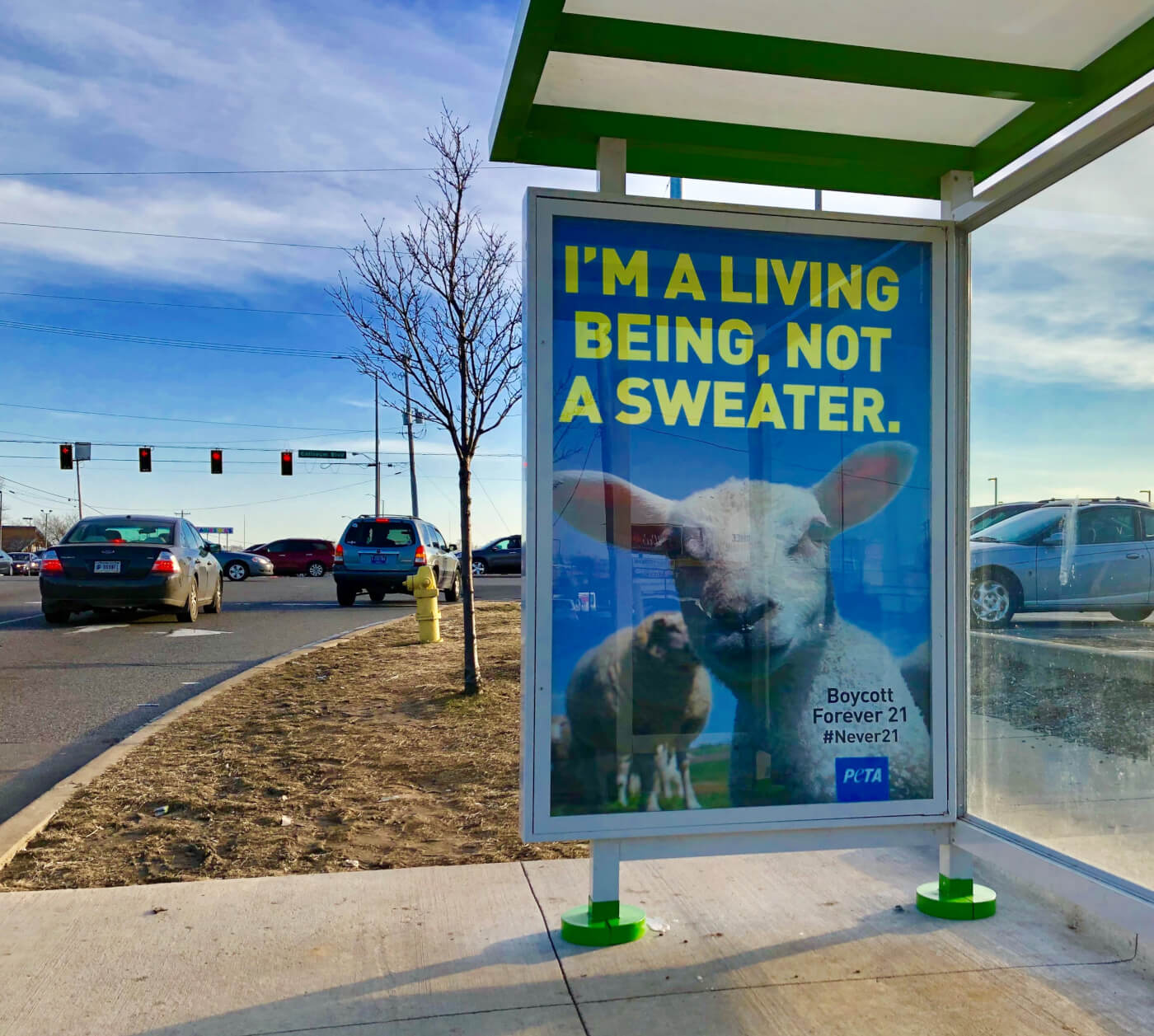 'I'm a Living Being, Not a Sweater' Ad Blitz Hits Fort Wayne—And Sends Forever 21 a Message