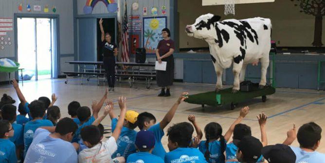 TeachKind Rescue Stories: Freddie on the Run (Grades 3–5)