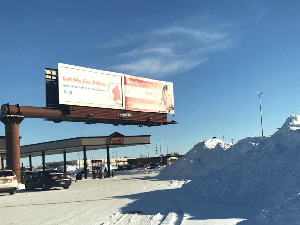 Let Me Go Petco Betta Fish Billboard Fargo North Dakota