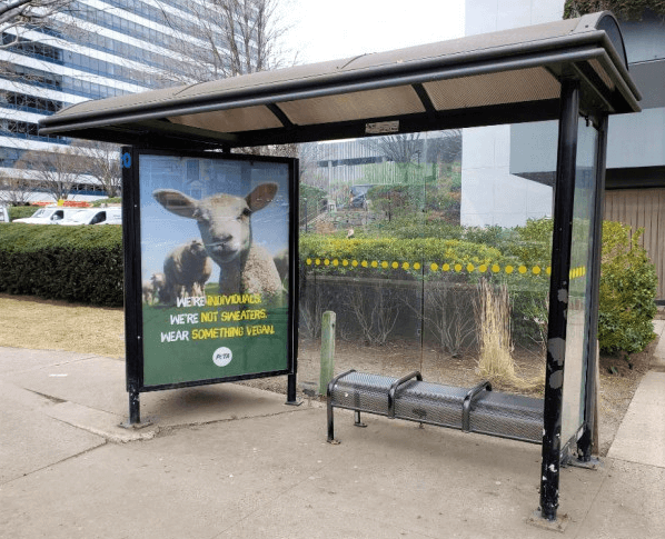 Wear Something Vegan Bus Ad in Stamford Connecticut