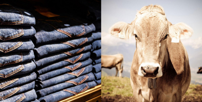Jeans Should Be Vegan … so Why Aren't Levi's?