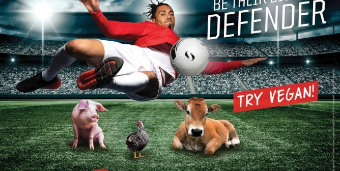 Chris Smalling Jumps to Animals' Defense in New PETA UK Vegan Ad