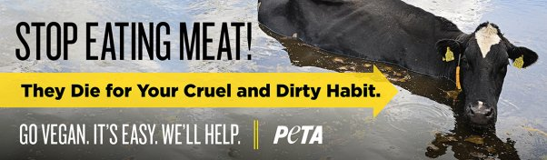Stop Eating Meat Cow Billboard