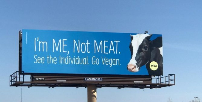 Analyze Some of PETA's Most Powerful Ads With Our Executive Vice President