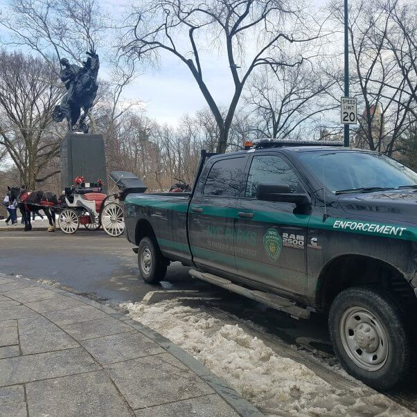 an NYC parks department truck ensures new horse-drawn carriage line rules are followed