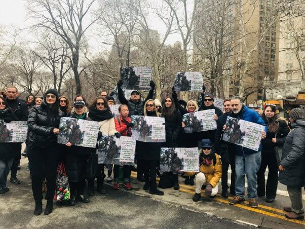 new york city residents gather to celebrate progress for horses forced to pull carriages