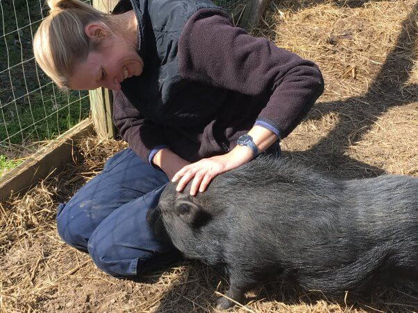 Woman with adorable black pot-bellied pig