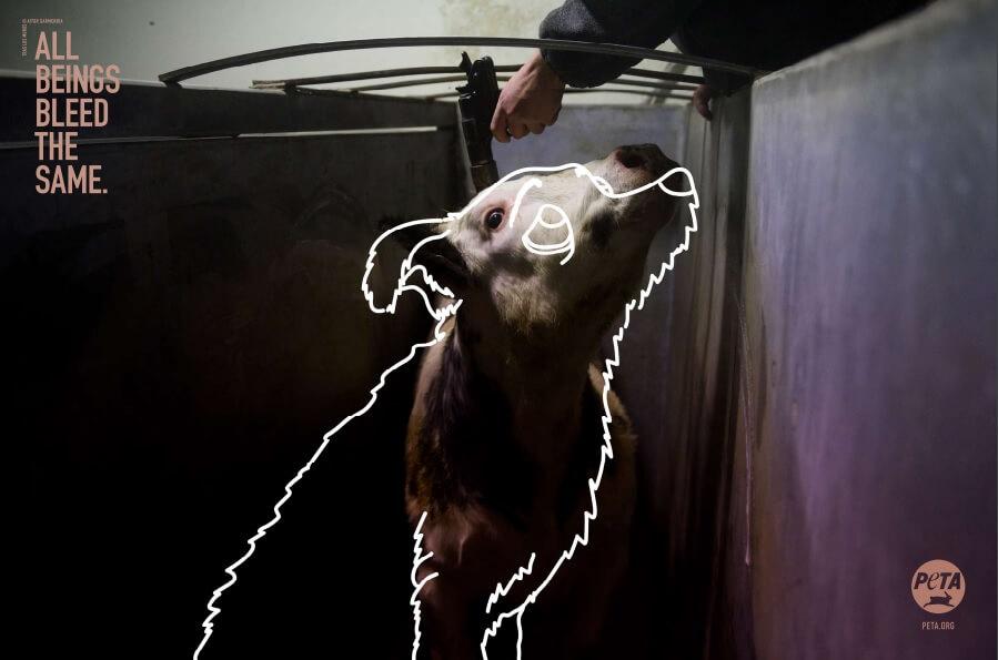 PETA Germany Ads