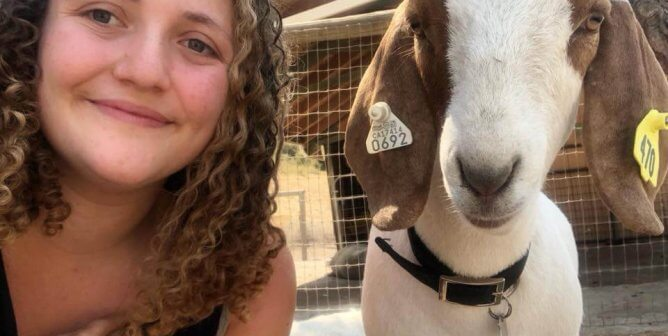 How a Goat Named Clyde Was Saved From the FFA
