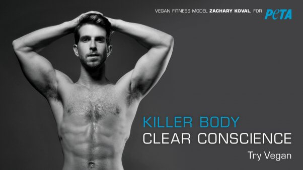 trust me you want to see peta s new gym ads peta