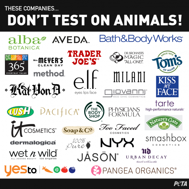 Cruelty Free Makeup: Companies that don't test on animals infographic