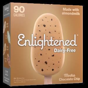 Enlightened Vegan Mocha Chocolate Chip Ice Cream Dairy-Free