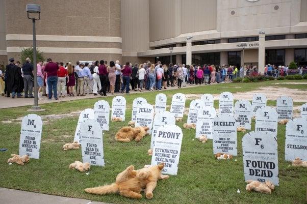 BREAKING: Texas A&M Ends MD Dog Breeding Program | PETA