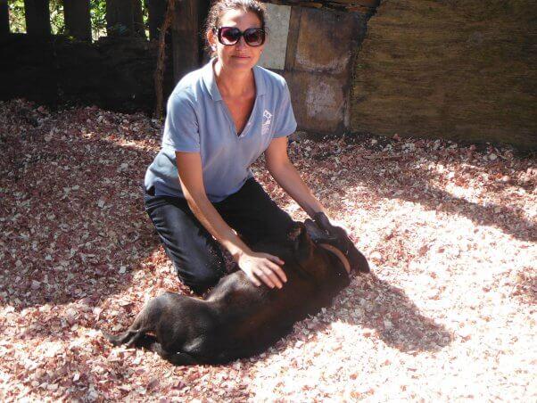PETA staffer petting black dog
