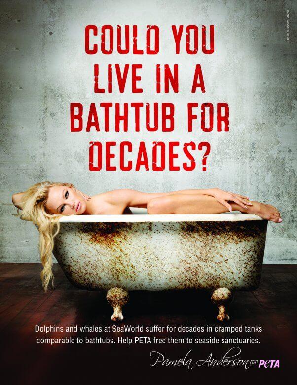Pamela Anderson Seaworld Bathtub Ad