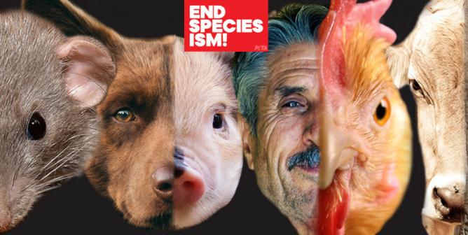 Debate Kit: Is Speciesism Unethical?