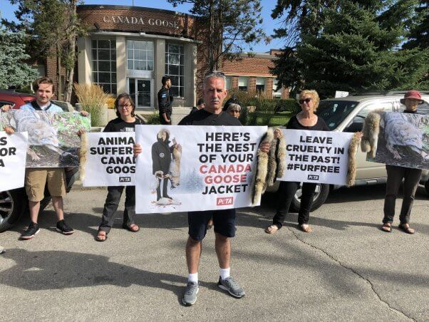 peta demo outside canada goose hq on the day of the annual shareholder meeting