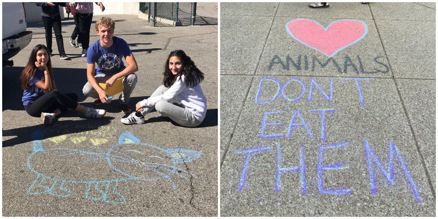 chalktivism school
